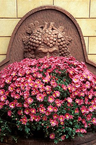 image 5-548-10 Germany, Frankfurt, Garden, Zum Gemalten Haus tavern, Sachsenhausen