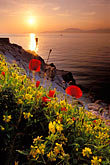 sunset stock photography | Greece, Hydra, Wildflowers on the coast, image id 3-700-77