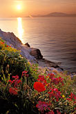 sunset stock photography | Greece, Hydra, Wildflowers on the coast, image id 3-700-84