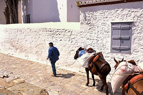 image 3-702-45 Greece, Hydra, Man with donkeys