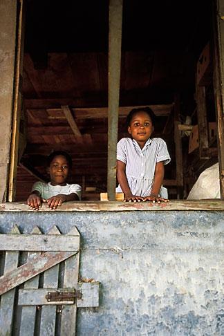 image 3-590-53 Grenada, Gouyave, Dougalston Estates Spice Plantation