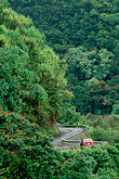 route stock photography | Hawaii, Maui, Rainforest and winding road along Hana Highway, image id 4-36-9