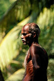 spice coast stock photography | India, Trivandrum, Laborer in forest, image id 7-60-20