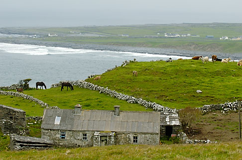 image 4-900-1079 Ireland, County Clare, Doolin, Farm by the sea