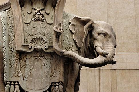 image S4-500-3860 Italy, Rome, Elephant Statue by Bernini, Piazza della Minerva