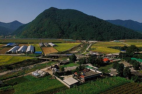 image 2-675-1 South Korea, Chungcheongbuk do, Farmland