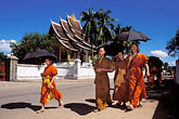 umbrella stock photography | Laos, Luang Prabang, Buddhist Monks, image id 8-600-2