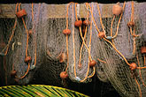 fishing nets and palm stock photography | Still life, Fishing nets and palm, image id 8-239-11