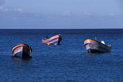 image 8-258-13 Martinique, Route des Anses, Fishing Boats, Petite Anse