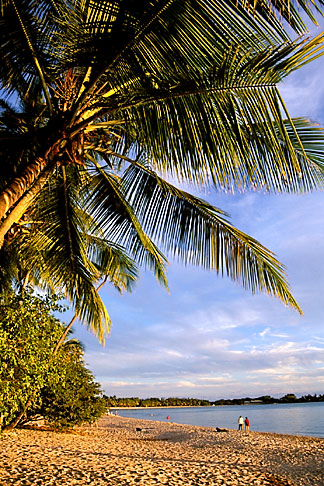 image 9-25-21 Travel, Caribbean Beaches, Martinique, Anse des Salines, Beach in late afternoon