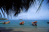 exotic stock photography | Martinique, La Caravelle, Beach, Tartane, image id 9-35-59