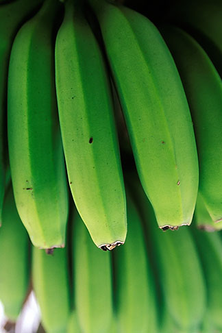 image 9-45-26 Fruit, Green Bananas