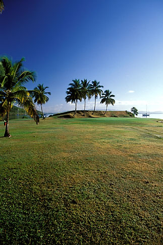 image 9-80-23 Martinique, Trois Islets, Golf de la Martinique