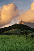 sugar cane field stock photography | Mauritius, Morning light on Pieter Both peak, image id 9-200-14