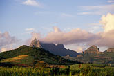 sugar cane fields stock photography | Mauritius, Morning light on Pieter Both peak, image id 9-200-22