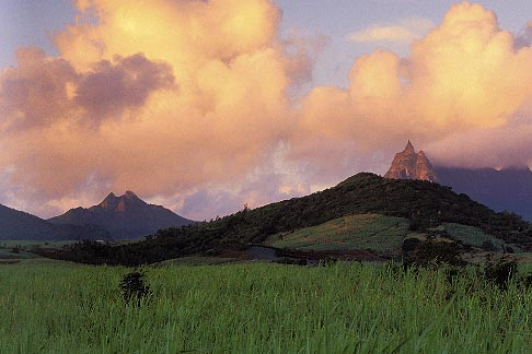 image 9-200-7 Mauritius, Morning light on Pieter Both peak