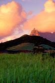 sugar cane fields stock photography | Mauritius, Morning light on Pieter Both peak, image id 9-206-12