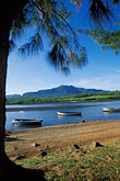 calm stock photography | Mauritius, Fishing  boats, Tamarin Beach, image id 9-206-9