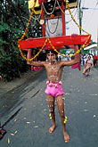 vertical stock photography | Mauritius, Cavadee Festival, Devotee carrying a wooden cavadee, image id 9-220-66
