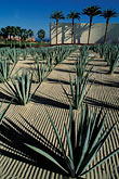 design stock photography | Mexico, Cabo San Lucas, Cactus and hotel entrance, image id 0-52-58