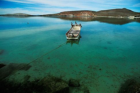 image 0-61-59 Mexico, Baja California Sur, Pelicans and fishing boat, Sea of Cortez