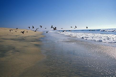 image 0-62-76 Mexico, Baja California Sur, Beach scene, Playa los Cerritos