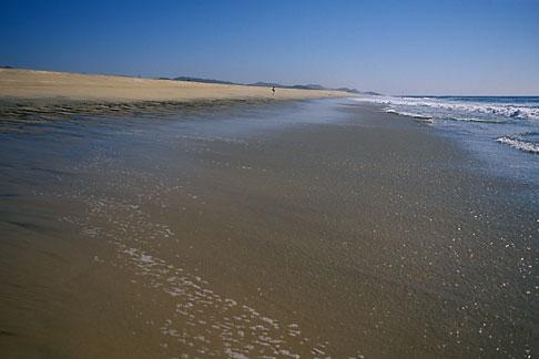 image 0-62-81 Mexico, Baja California Sur, Beach scene, Playa los Cerritos