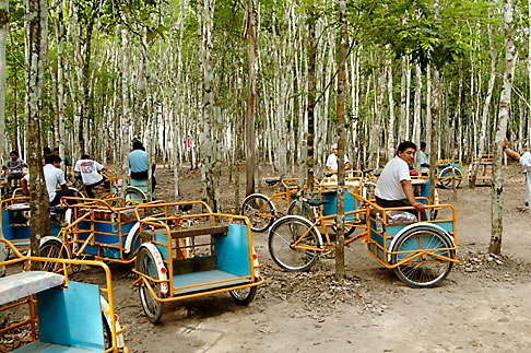 image 4-850-2850 Mexico, Yucatan, Coba, Bicycles for rent