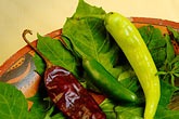 chili peppers stock photography | Mexican Food, Typical ingredients for Mayan Cuisine, Chaya leaves, achiote, habaneros, image id 4-850-3763