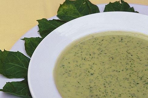 image 4-872-19 Mexico, Yucatan, Cream of chaya soup