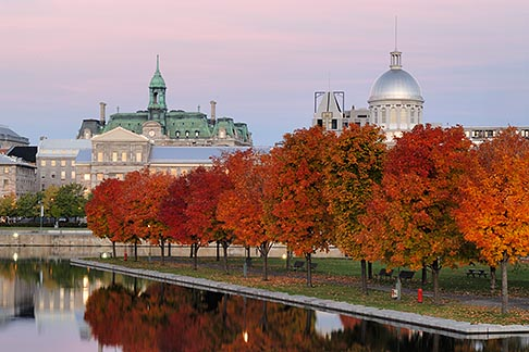 image 6-460-2169 Canada, Montreal, Bonsecours Park and Hotel de Ville with fall foliage