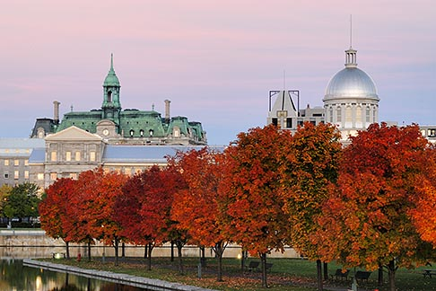 image 6-460-2171 Canada, Montreal, Bonsecours Park and Hotel de Ville with fall foliage
