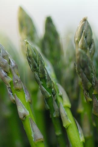 image 6-460-7743 Food, Asparagus, closeup