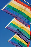 vertical stock photography | Flags, Rainbow Flags for Gay Pride, image id 6-460-7765