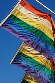 yellow stock photography | Flags, Rainbow Flags for Gay Pride, image id 6-460-7770