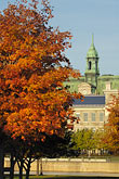 sunlight stock photography | Canada, Montreal, Hotel de Ville with fall foliage, image id 6-460-7903