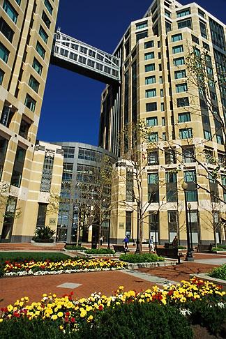 image 1-99-20 California, Oakland, Oakland Federal Building