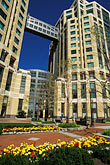 east garden stock photography | California, Oakland, Oakland Federal Building, image id 1-99-20