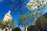 tree stock photography | California, Oakland, Frank H. Ogawa Plaza, image id 1-99-23