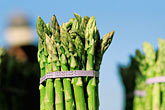 image 4-730-68 California, Oakland, Jack London Square, Farmers Market, Asparagus