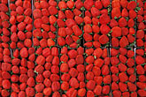 pattern stock photography | Food, Fruit, Strawberries, image id 4-730-79