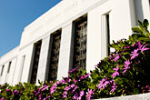 flowers stock photography | California, Oakland, Alameda County Courthouse, image id S5-60-3348