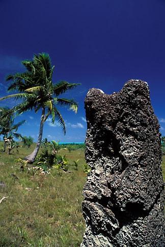 image 8-117-11 Palau, Babeldaob, Stone monoliths, Badrulchau