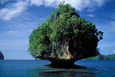 water stock photography | Palau, Rock Islands, Forested island, image id 8-87-19