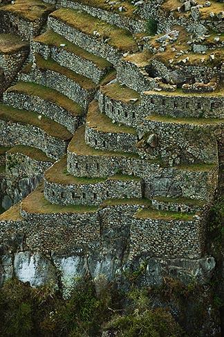 image 8-760-1474 Peru, Machu Picchu, Inca agricultural terraces