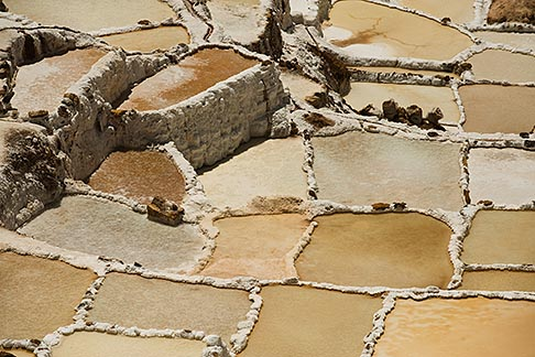 image 8-761-1981 Peru, Pisac, Salinas, Inca salt pans stil used today for evaporating salt