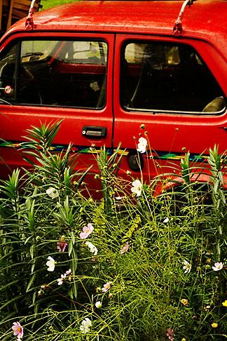 image 4-960-1237 Poland, Jelenia Gora, Red car abandoned in garden