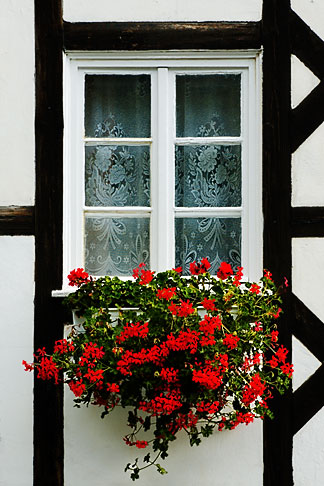 image 4-960-1242 Poland, Jelenia Gora, Window and flowerbox