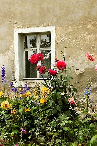 image 4-960-1287 Poland, Jelenia Gora, Garden and window