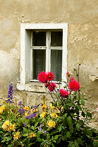 image 4-960-1292 Poland, Jelenia Gora, Garden and window